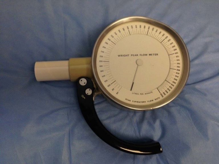 Wright Peak Flow Meter