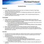 1987 Montreal Protocol